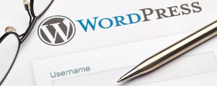 Wordpress para no programadores