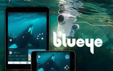 Blueye branding