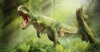 blog/En-Vahsi-Dinozorlar.jpg