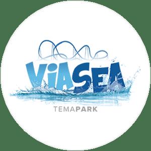 Viasea Icon