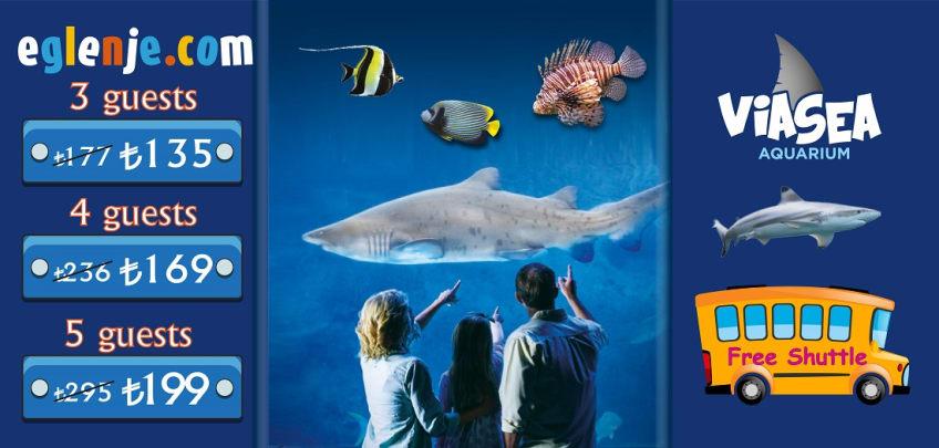 viasea aquarium entry fees and ticket prices eglenje