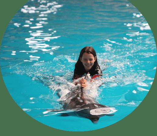İstanbul Dolphinarium Müşteri Servisi Resmi