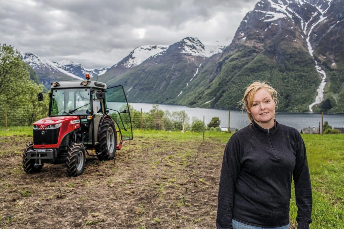 Vindyrking i Norge med MF 3640