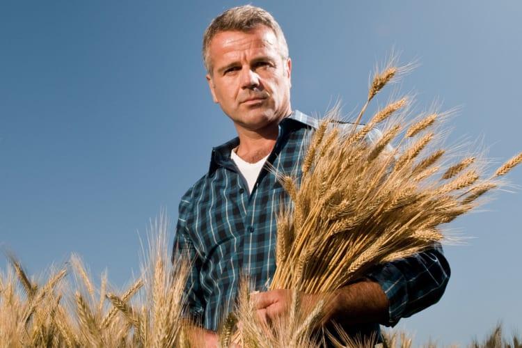 Det farlige livet som bonde