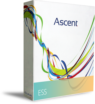 The Eilisys ESS is capable of cross browser functionality and can be run on IE, Netscape and Firefox.
