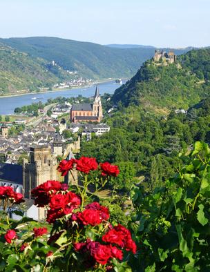 Immobilienmakler Rheinland-Pfalz