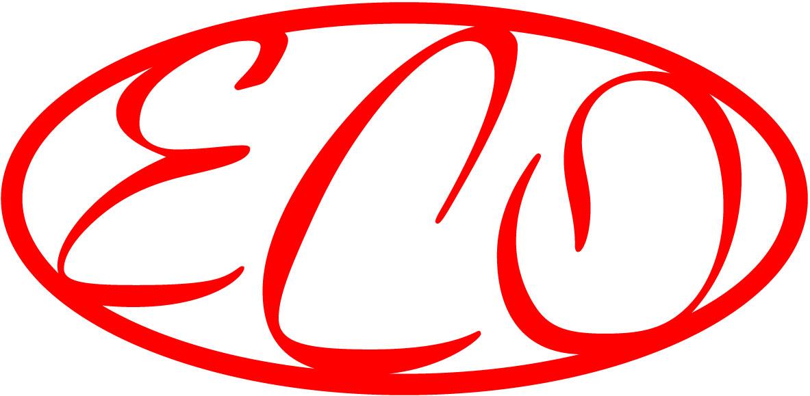 Hier sehen Sie das Logo von E.C.O. Wirtschaftsberatungsgesellschaft mbH