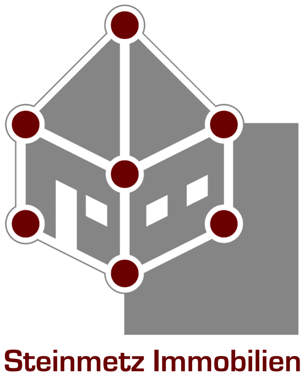 Hier sehen Sie das Logo von Steinmetz Immobilien