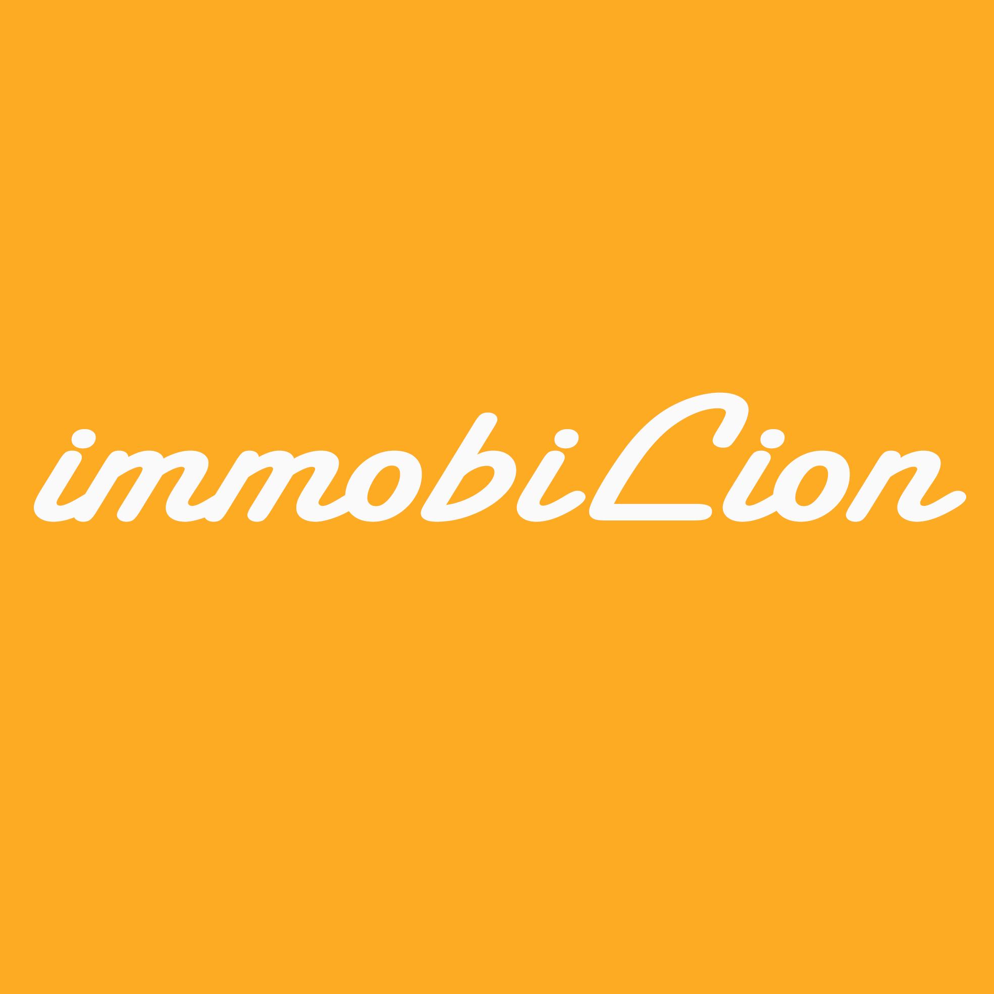 Hier sehen Sie das Logo von immobiLion
