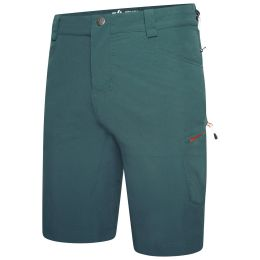 DARE 2B TUNED IN II SHORT WILD GREEN 21