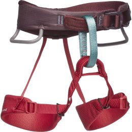 BLACK DIAMOND MOMENTUM HARNESS KIDS' WILD ROSE 21