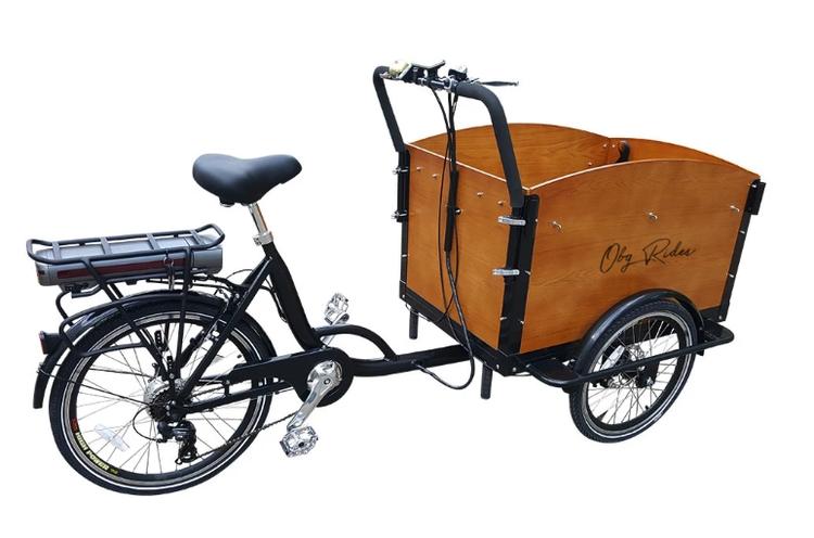 Cargobike 250W