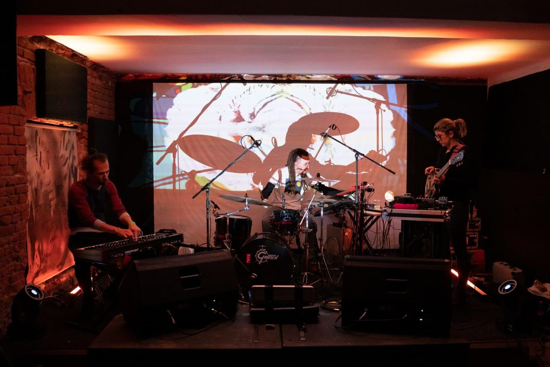 Acetobă live. Foto: Ovidiu Zimcea