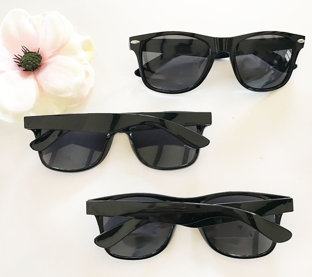 EB3217NP-Blank All Black Sunglasses