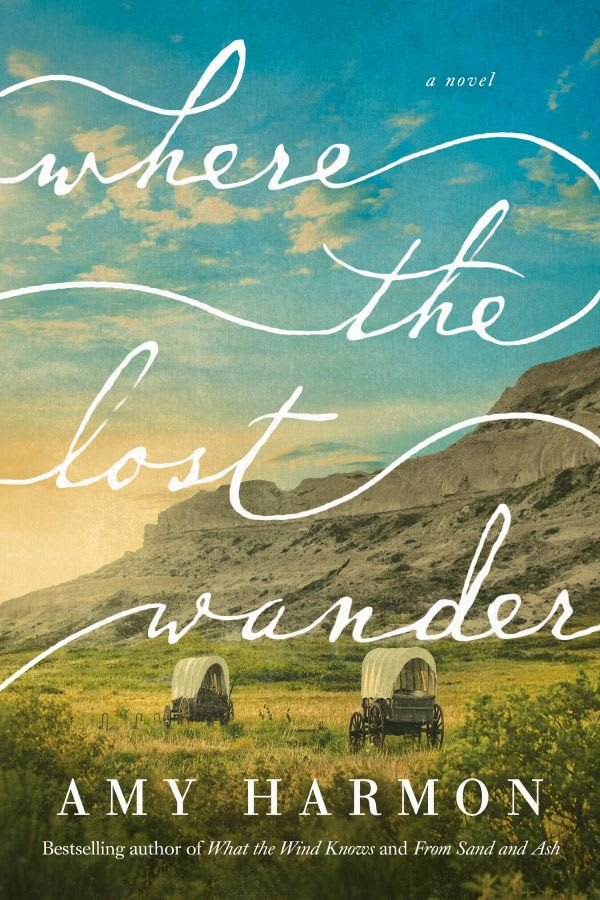 the book Where The Lost Wander