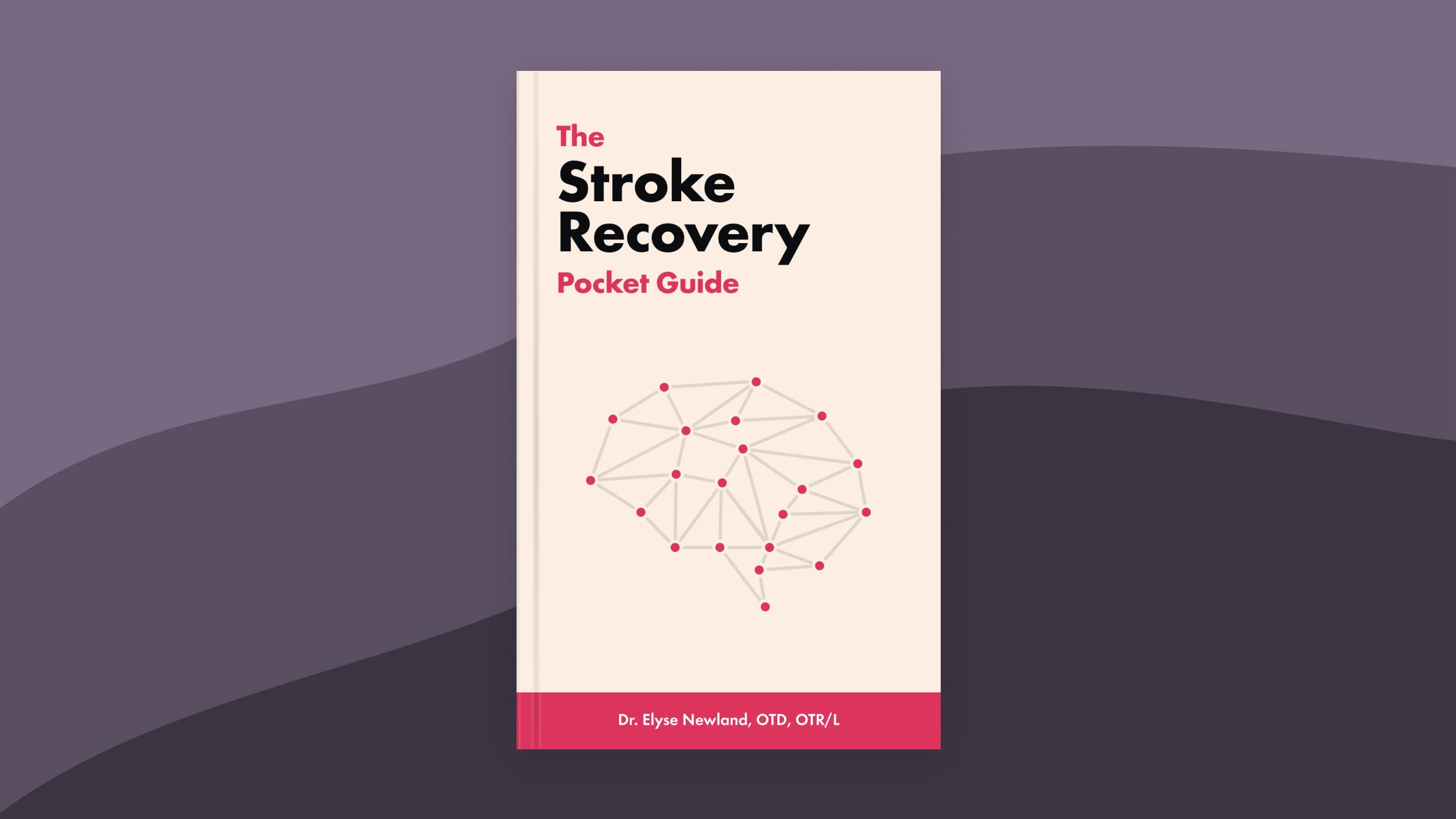 The Stroke Recovery Pocket Guide eBook Cover