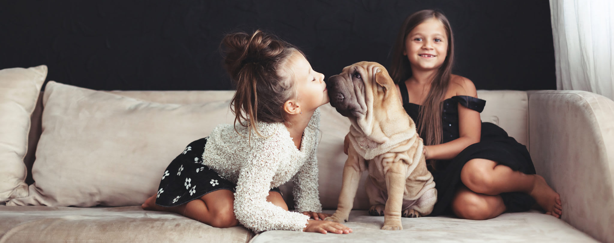 siblings with pup