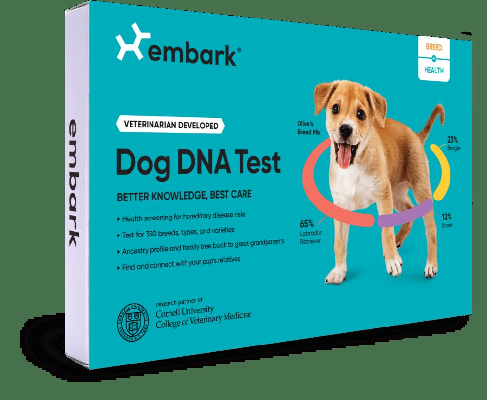 Embark Dog DNA Breed + Health Kit
