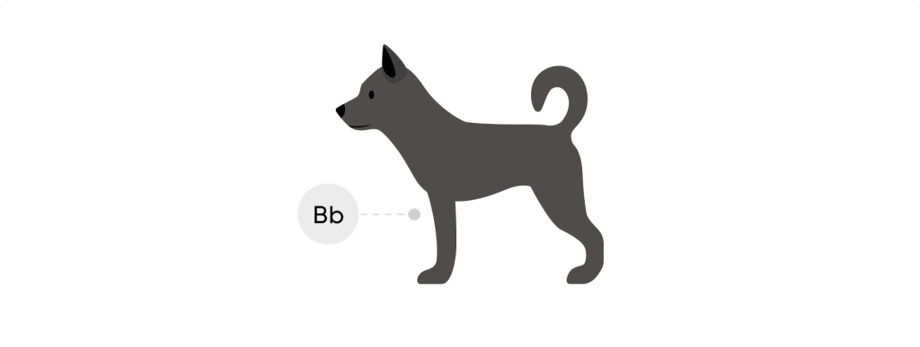 Black dog with uppercase B lowercase b genotype