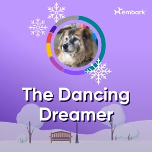 The Dancing Dreamer