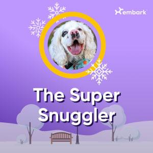 #AllGoodDog contest winner The Super Snuggler
