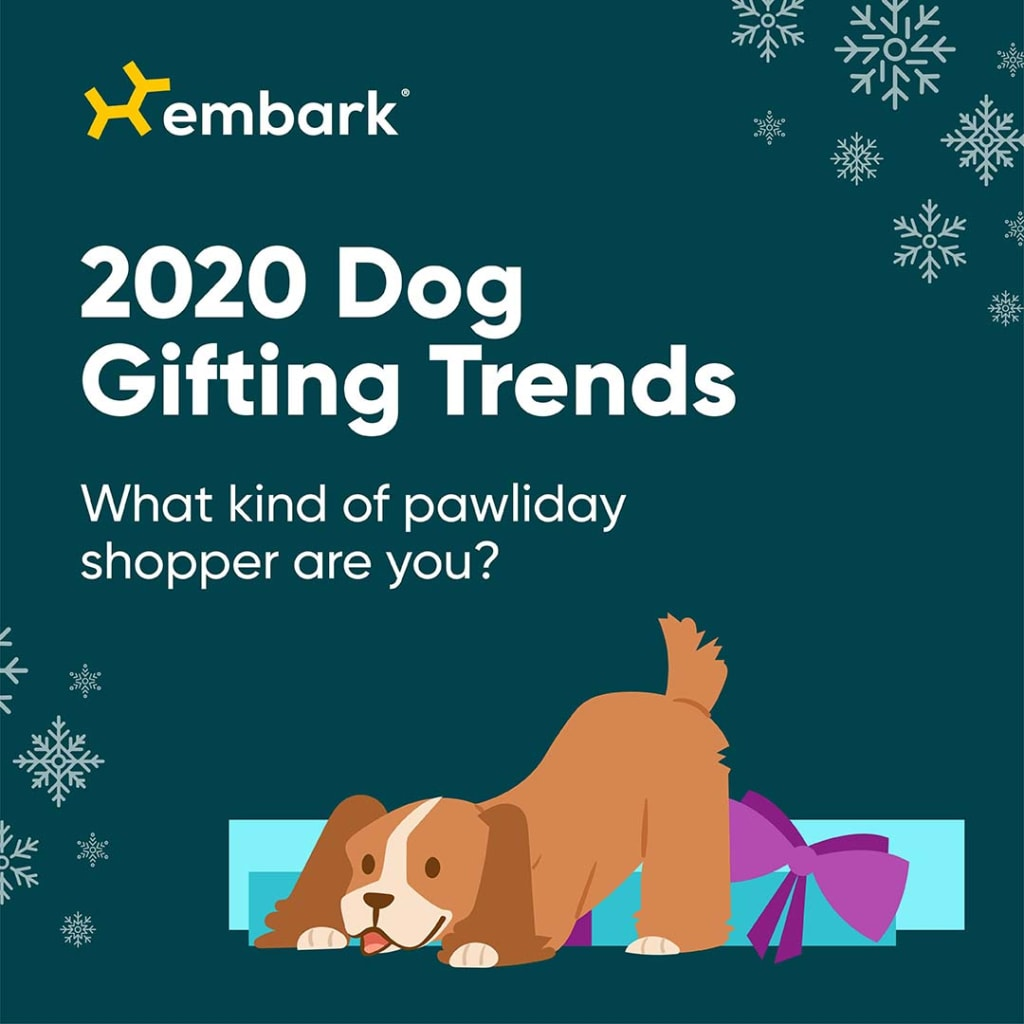 2020 Dog Gifting Trends with cartoon image of a dog with a present