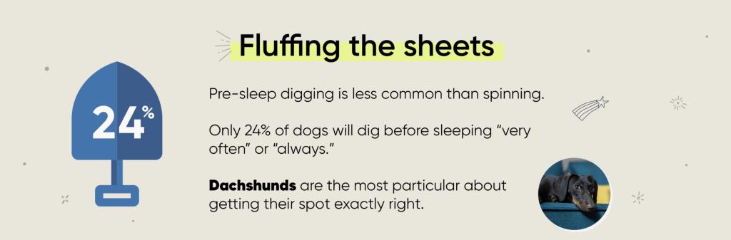 dog sleeping habits infographic digging