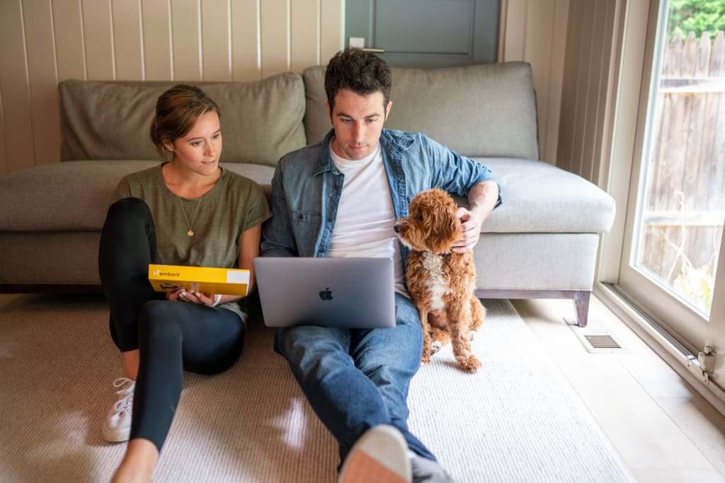 man and woman with dog looking at embark results on laptop