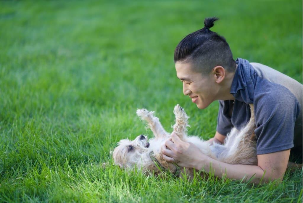 Embark Dog Love pic - Jason