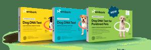 Embark's Breed ID Kits, Breed + Health Kit, and Purebred Dog DNA Test