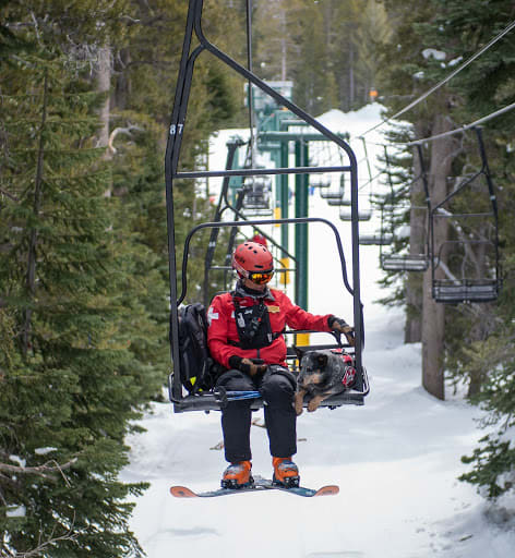 Heather Dent is a Supervising Ski Patroller with avalanche rescue dog, MoMo