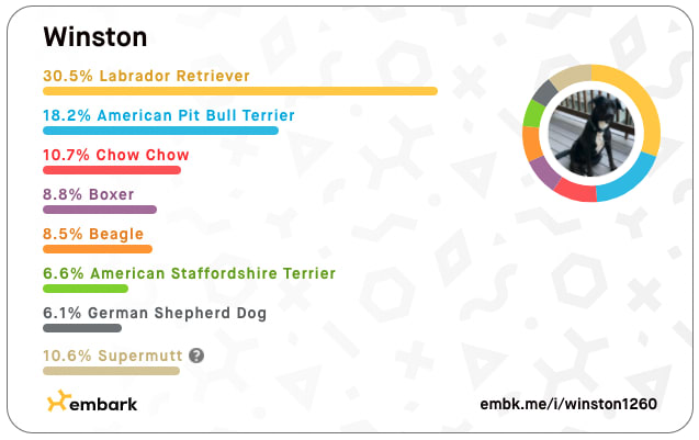 Winston's Embark Breed Results