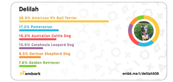 Puppy Delilah's Embark Results