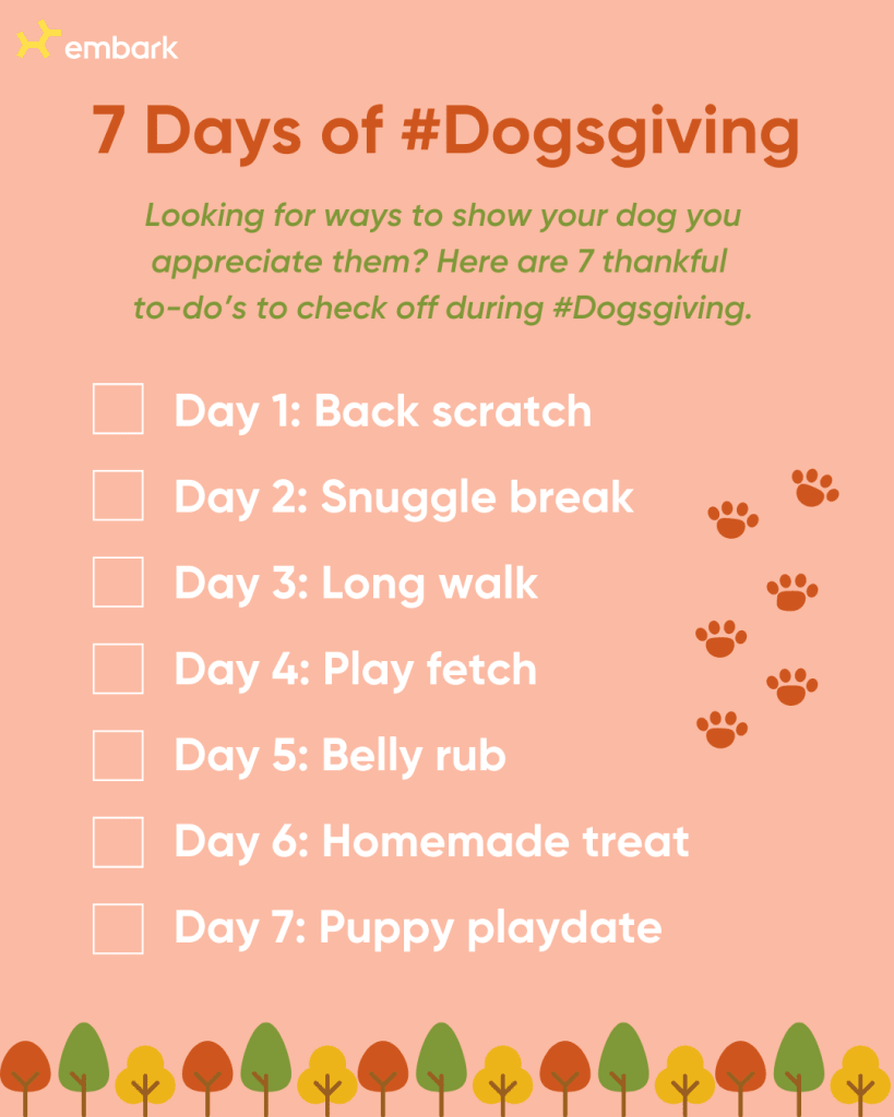 7 days of Dogsgiving Check list