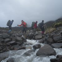 Hikers in the Dendrosenecio kilimanjari woodlands