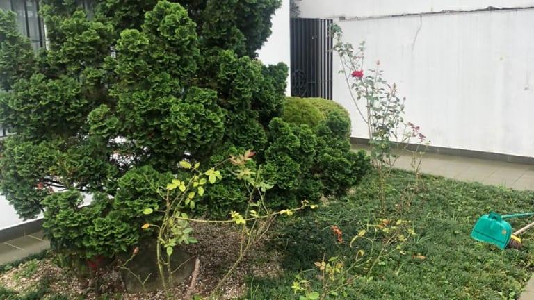 Imagem do imóvel ID-15243 na Avenida Indianópolis, Indianópolis, São Paulo - SP