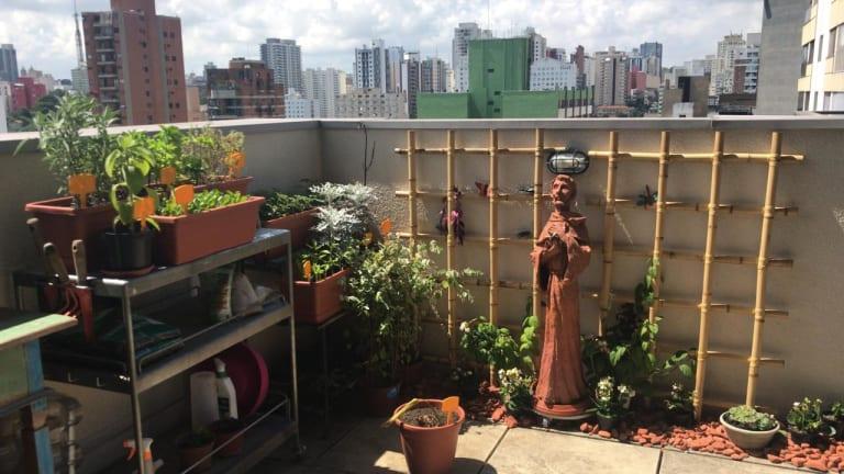 Imagem do imóvel ID-15882 na Rua Joaquim Antunes, Pinheiros, São Paulo - SP