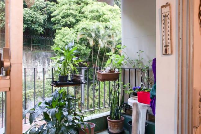 Imagem do imóvel ID-23642 na Rua Conde de Bonfim, Tijuca, Rio de Janeiro - RJ