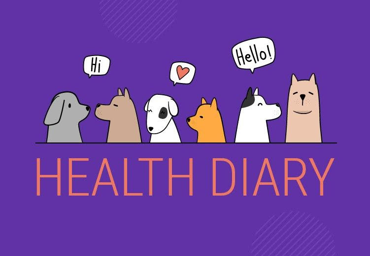 Health Diary for Keeping Your Furry Friend Fit. GoDog Gets Major Update