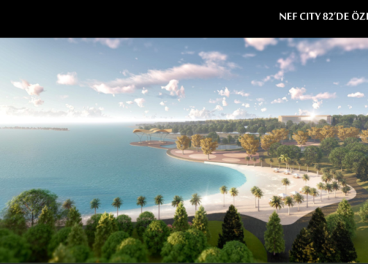 Nef City 82