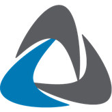 Netskin GmbH Logo