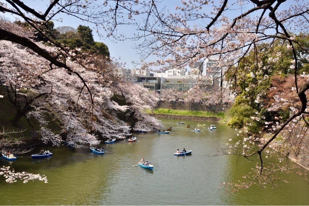 Die Natur von Tokio mit Tabitha Klein erleben