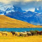 Enchanting Travels South America Tours Magic light of sunset