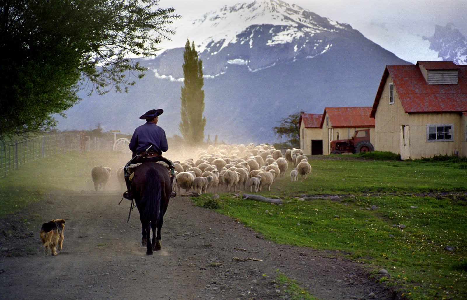 Reiten durch wildromantische Landschaften in Argentinien