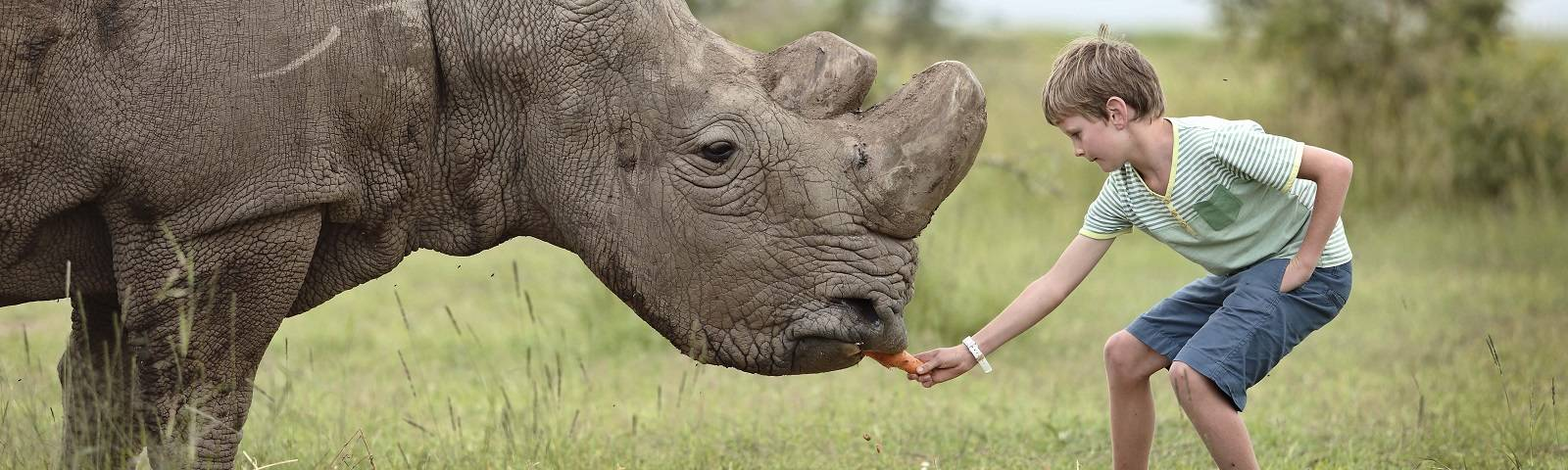 4. WHY ENCHANTING OPBC-interacting-with-rhino