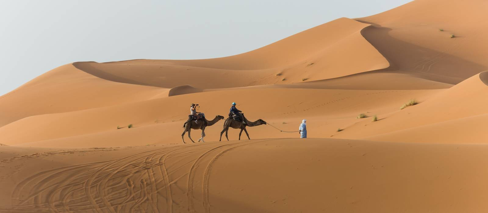 Things to do in Morocco - camel trekking