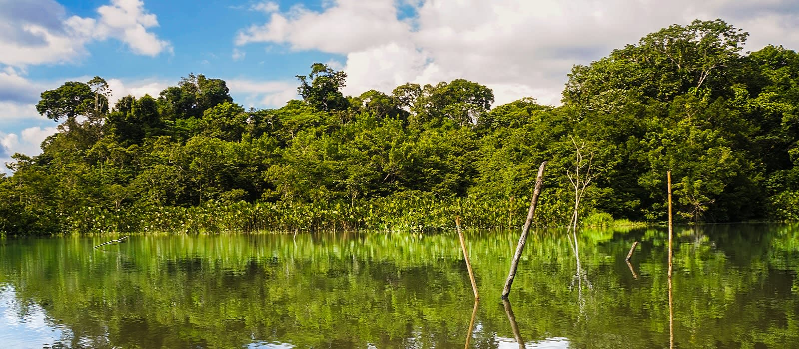 Ecuador Tours-Amazon Yasuni National Park