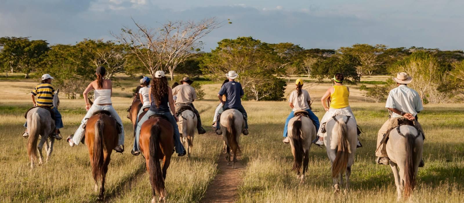 Perspektive eines Llaneros (kolumbianischer Cowboy), Südamerika