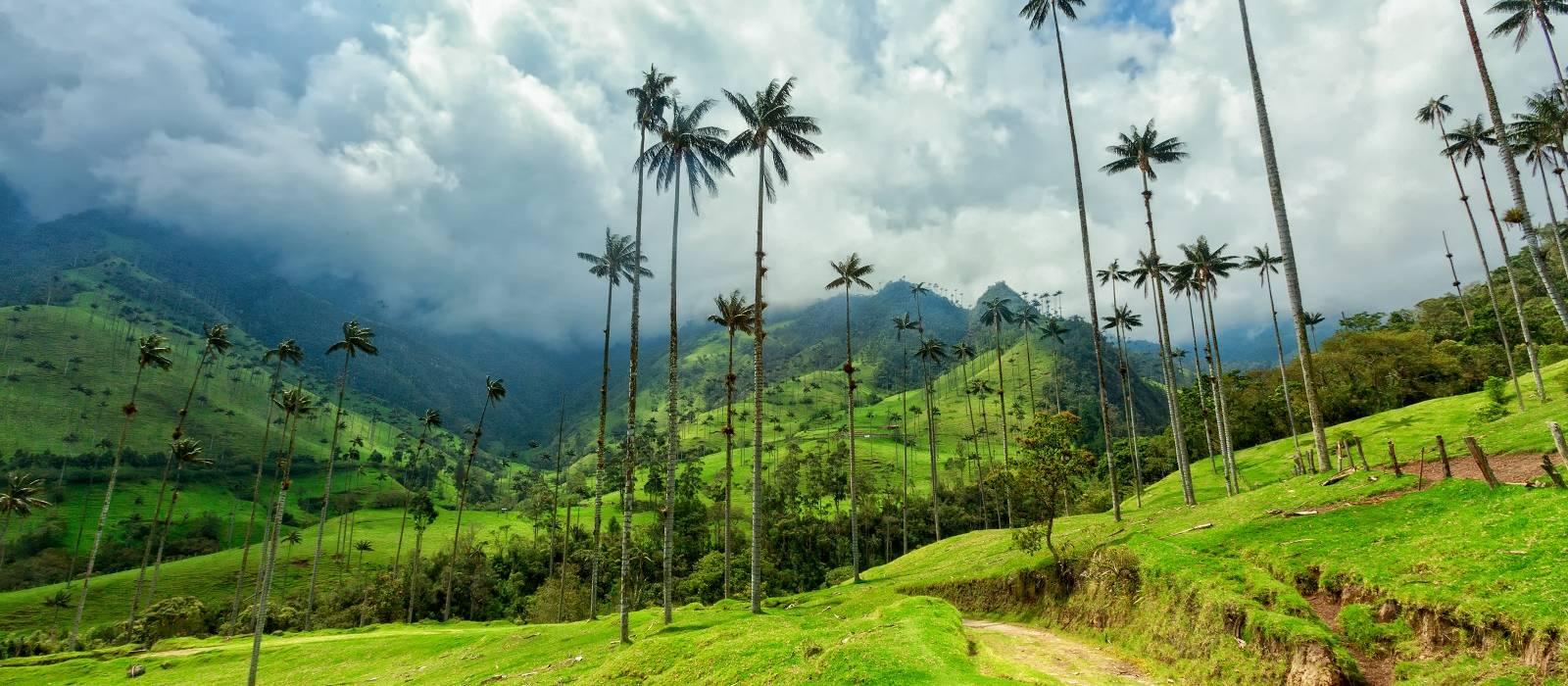UNESCO World Heritage Site, Coffee Region, Colombia, South America