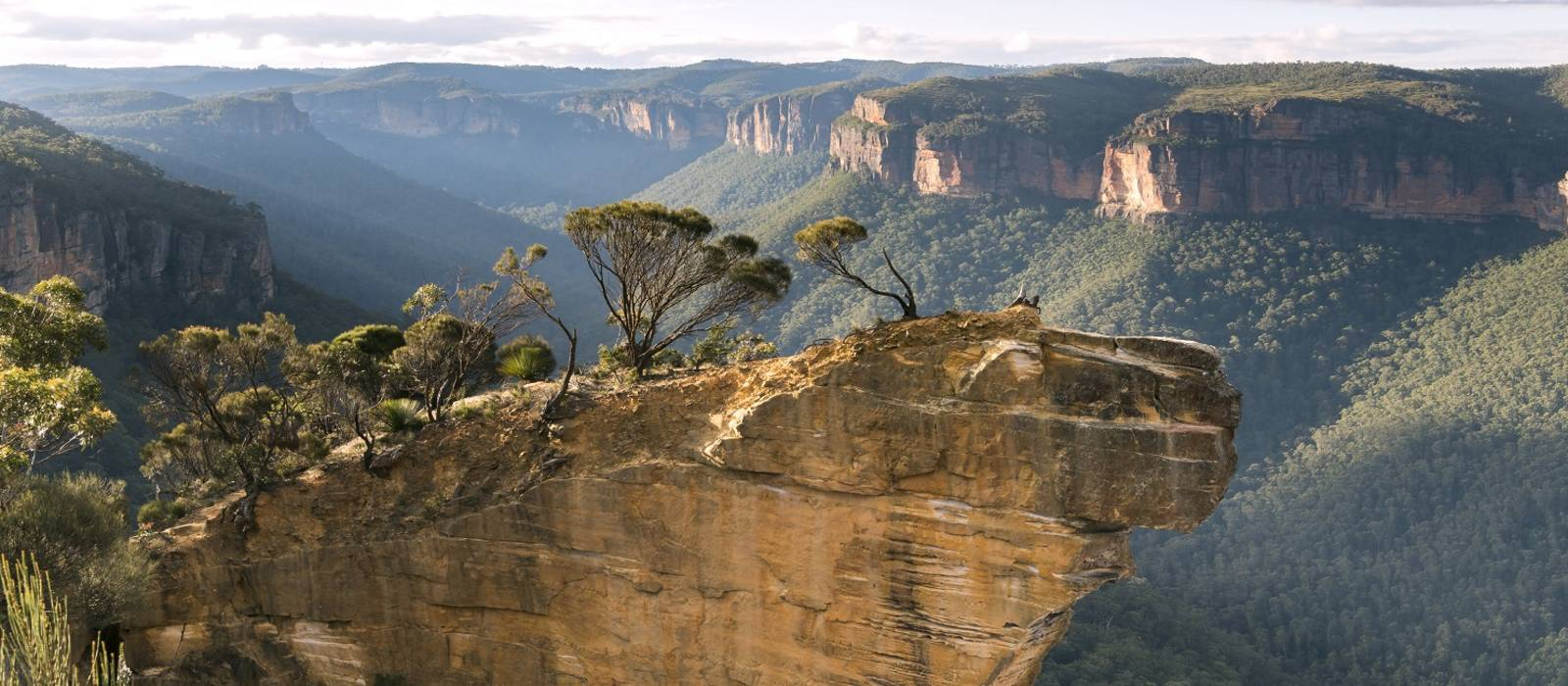 Aussichtspunkt von Hanging Rock in den Blue Mountains in Australien